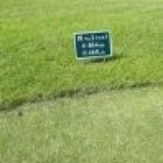 ゴルフスタイル